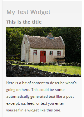 WordPress Widgets - Screenshot of a test widget 1