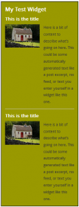 WordPress Widgets - Screenshot of a test widget 8