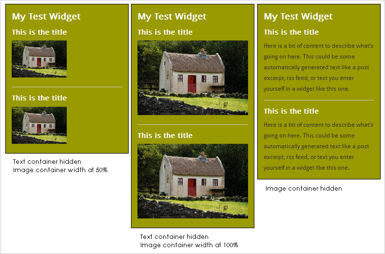 WordPress Widgets - Screenshot of a test widget 9