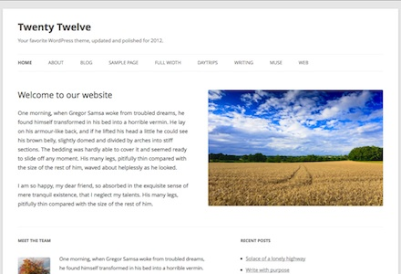 Free WordPress Themes by Automattic: The Best of the Best