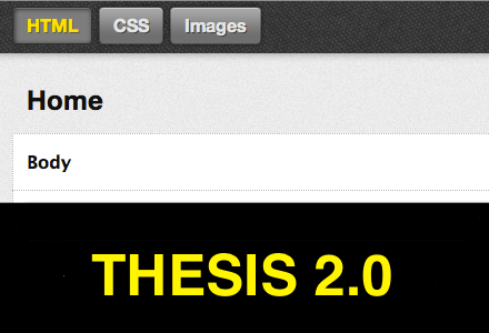 thesis options page