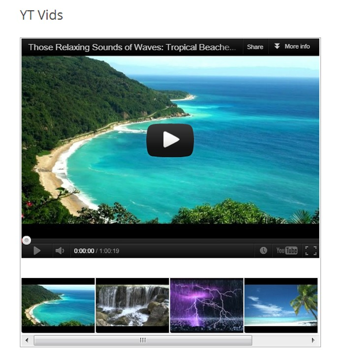 WordPress YouTube Player Plugins for More Control and More