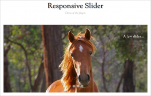 Responsive WordPress Plugins - Responsive Slider