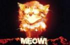 fire-meow