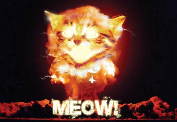 apocalypse meow protects your wordpress site from hackers