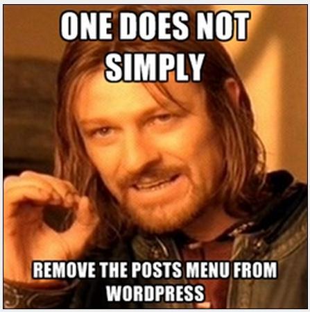 remove-posts-menu