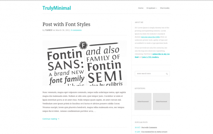 TrulyMinimal WordPress theme