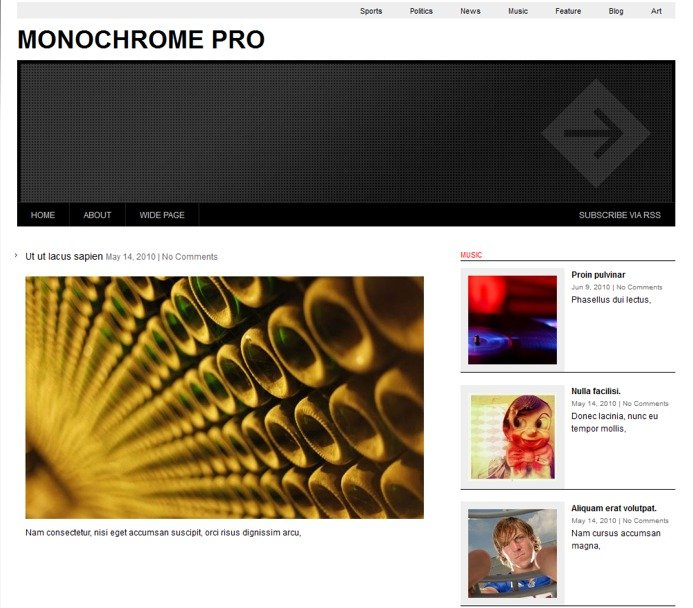 monochrome-pro