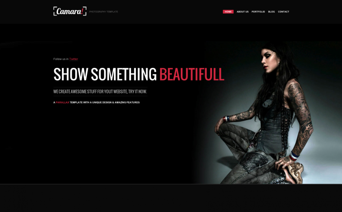 Camara WordPress theme