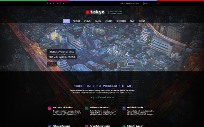 Tokyo WordPress theme