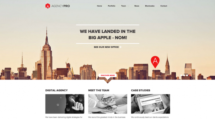Agency Pro flat WordPress theme