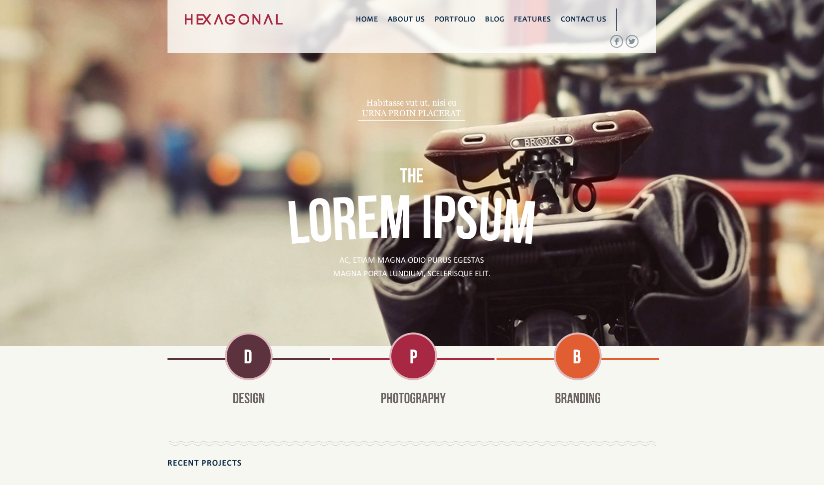 Hexagonal flat WordPress themes