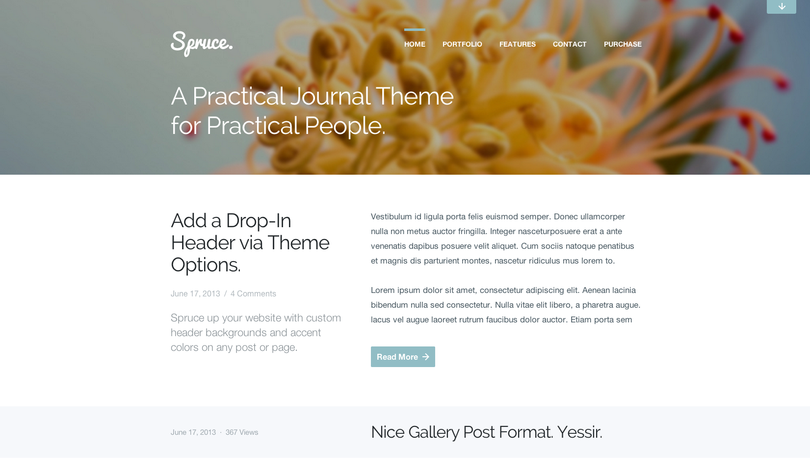 Spruce flat WordPress theme