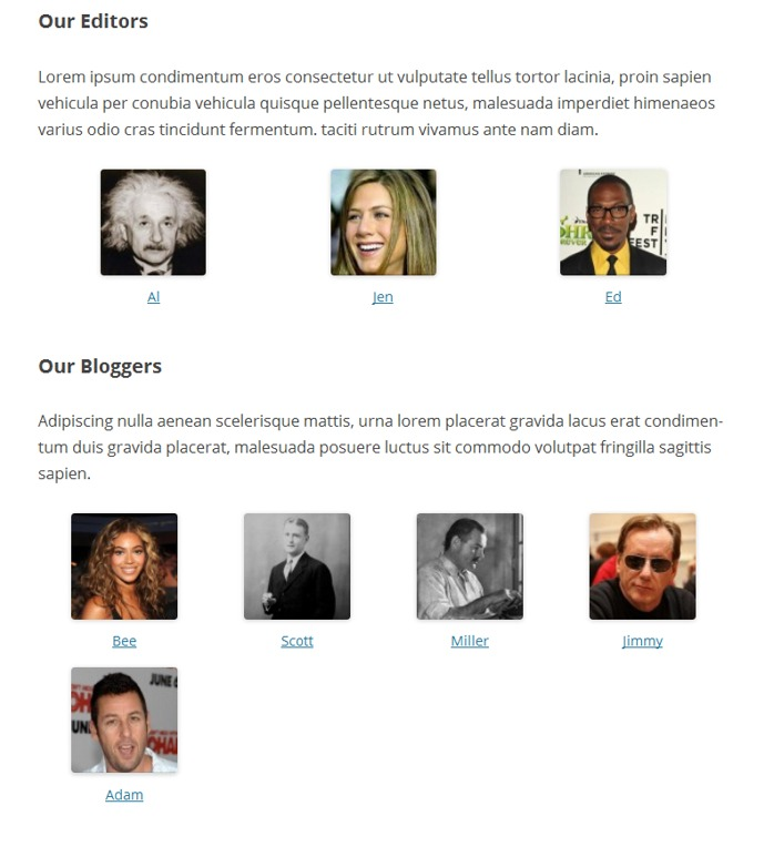 authors-page-user-roles2
