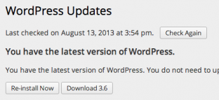 WordPress auto-updates