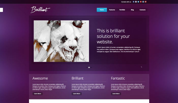 Brilliant colorful WordPress theme