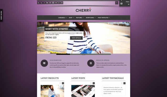 Cherry colorful WordPress theme