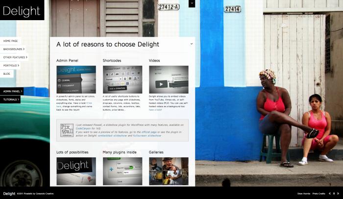 Delight colorful WordPress theme