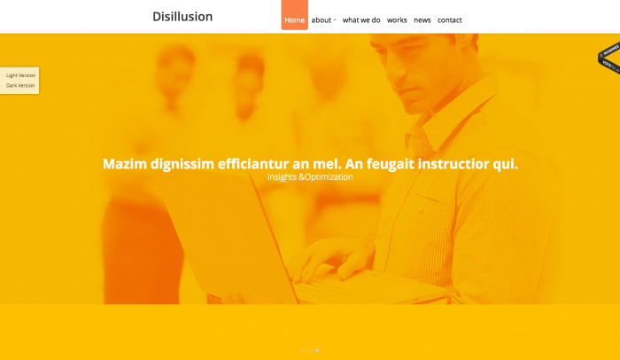 Disillusion colorful WordPress theme