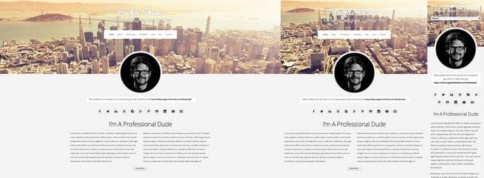 Organic Themes Portfolio responsive