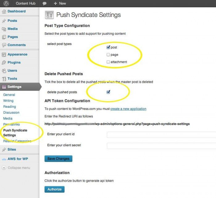 The Push Syndication plugin's settings page