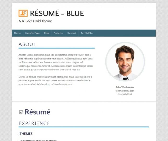 resume-blue-theme