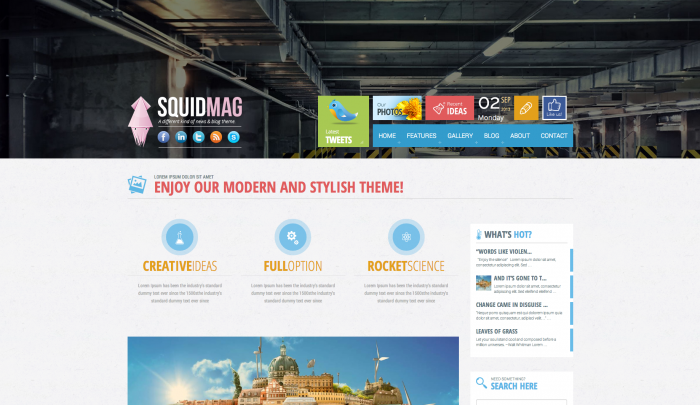 SquidMag colorful WordPress theme
