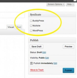 Screenshot showing the list of site groups in the Syndicate metabox