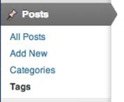 Screen grab showing the WordPress Posts menu
