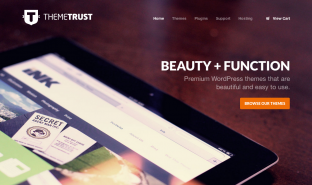 Theme Trust homepage