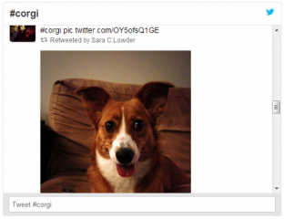 An example of the in-built Twitter widget service.