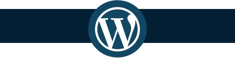 wp-logo-800px2