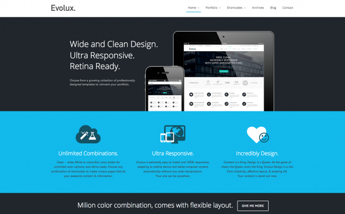 Evolux WordPress theme