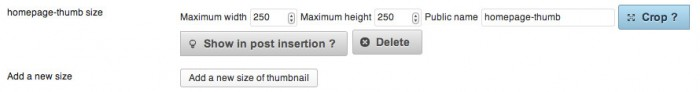 Screen grab of adding a new image size in the Simple Image Sizes settings page