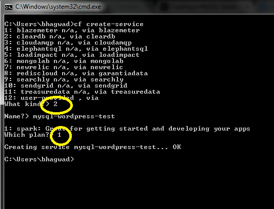 Create the MySql Database