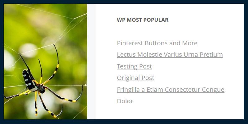 7-wp-most-popular