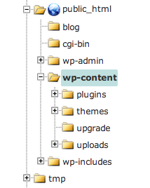 wp-content