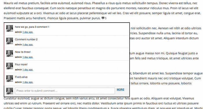 Screenshot showing the paragraph comments