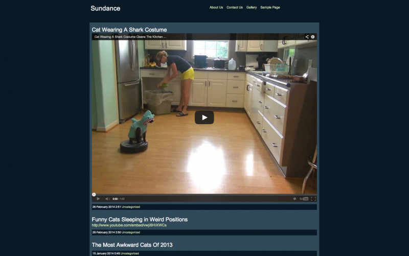 webvideo1