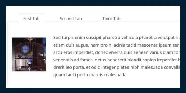 7 Terrific Free WordPress Tab Plugins - WPMU DEV