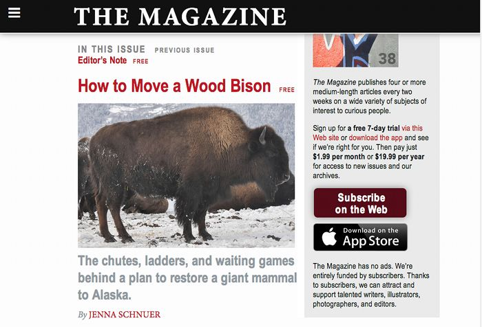 Screenshot of The Magazine's home page.