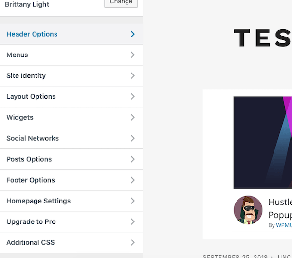 A look at the menu options of this theme