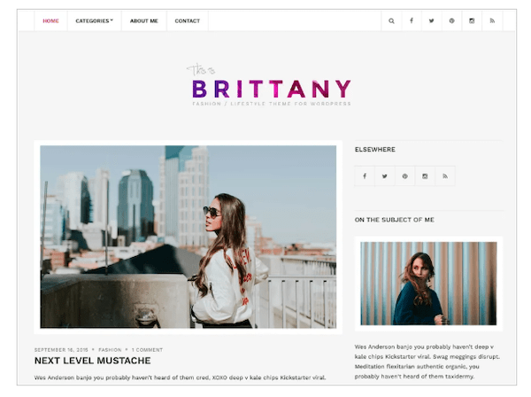 A look at the Brittany Light WordPress theme