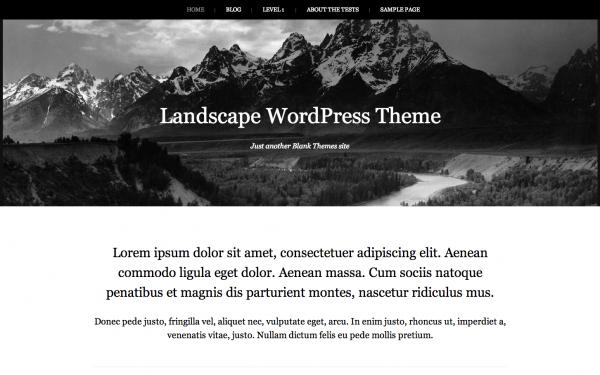 30+ Quality Free, Minimalist and Stunning WordPress Themes - WPMU DEV