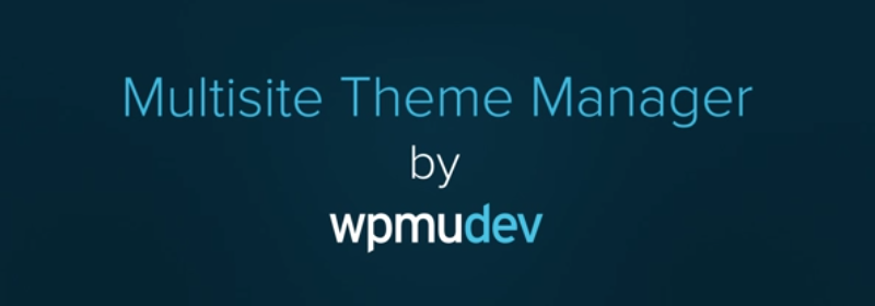 Multisite Theme Manager