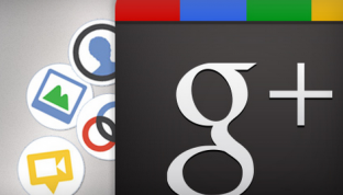 The Google + Plugin