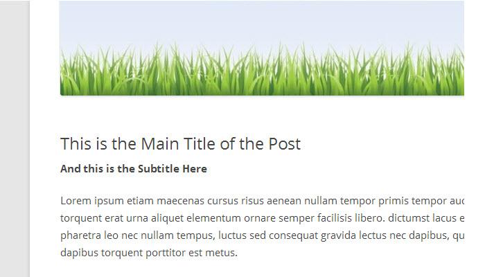 subtitle-on-post