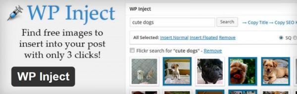 Image result for wp inject