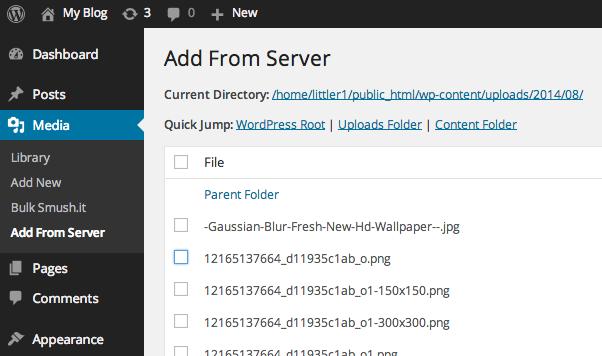 Add From Server plugin