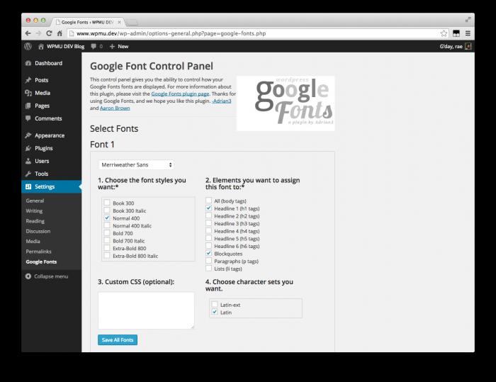 WP Google Fonts options